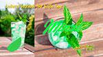 leckere Getränke für die heißen Tage, leckere Getränkevariation, Kräuter, Minze, Pfefferminze, heiß oder kalt
