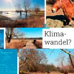 Klimae´wandel in der Altmark?, Sonnige 16°C, Ausflug, Diana & Andreas & Luna in Buch, Wir gehen in die Natur, denn es ist Urlaubswetter, und das im kältesten Monat des Jahres, bedeutet das Klimawandel?