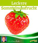 Leckere Sammelnussfrucht, Erdbeere, gut erklärt, Sven-David Müller, DeutschLand-Riegel