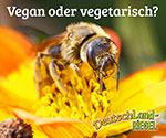 Bienenhonig, Biene, vegan oder vegetarisch?, Honig