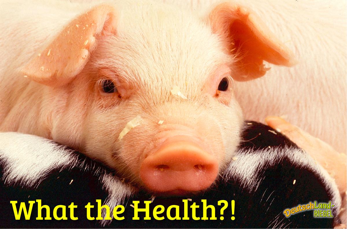 What the Health, kurze Filmkritik, Empfehlung, aktueller Film, der kritisch Nahrungsmittelindustrie, Medizin und Pharma im Ganzen hinterleuchtet