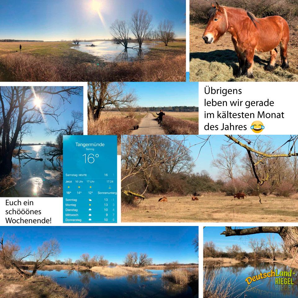 Sonnige 16°C, Ausflug, Diana & Andreas & Luna in Buch, Wir gehen in die Natur, denn es ist Urlaubswetter, und das im kältesten Monat des Jahres, bedeutet das Klimawandel?